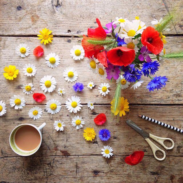 dieta de flores